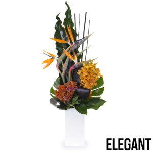 The Bondi - Elegant