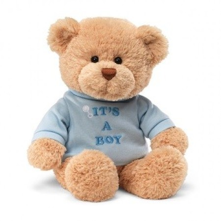 Message Bear: It`s a Boy