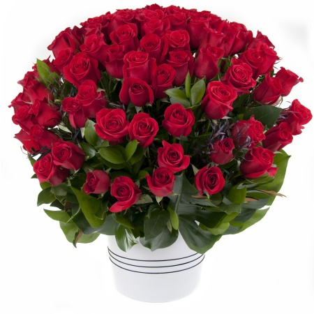 100 Red Rose Arrangement (AR100)