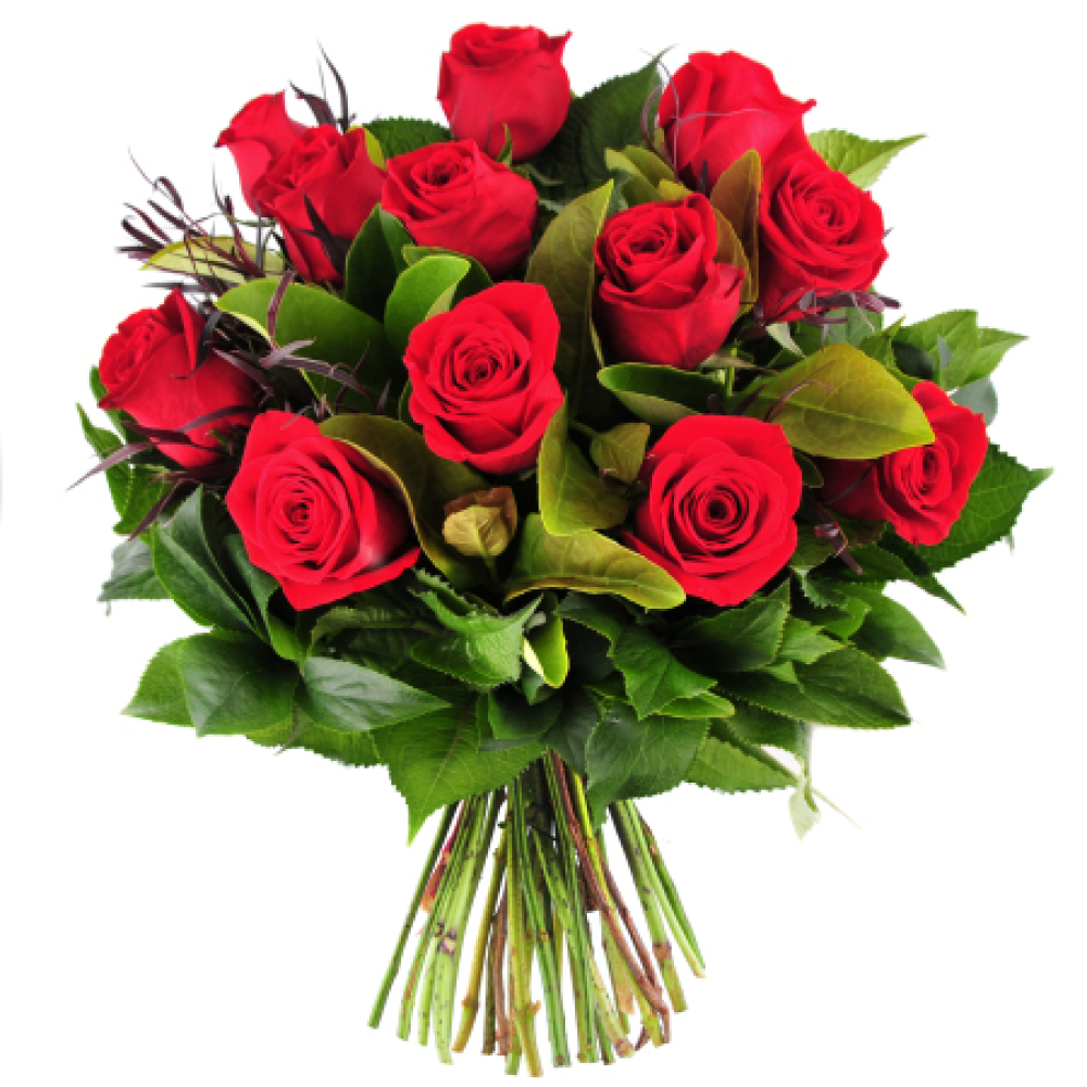A Bouquet of 12 Red Roses