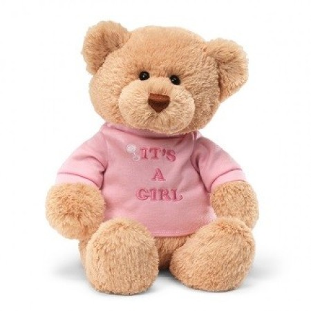 Message Bear: It`s a Girl